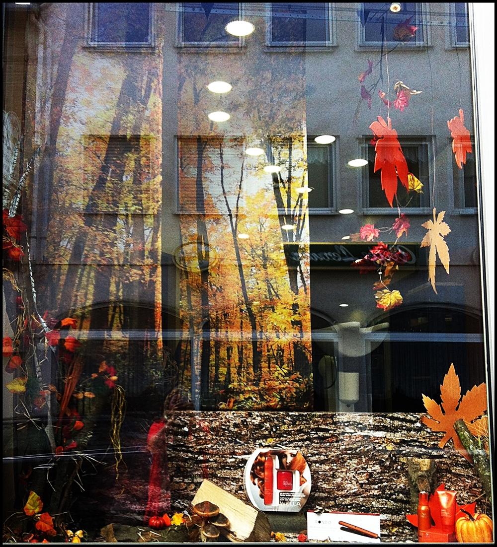 Schaufenster herbst und weihnachten creative deko des for Schaufensterdekoration ideen