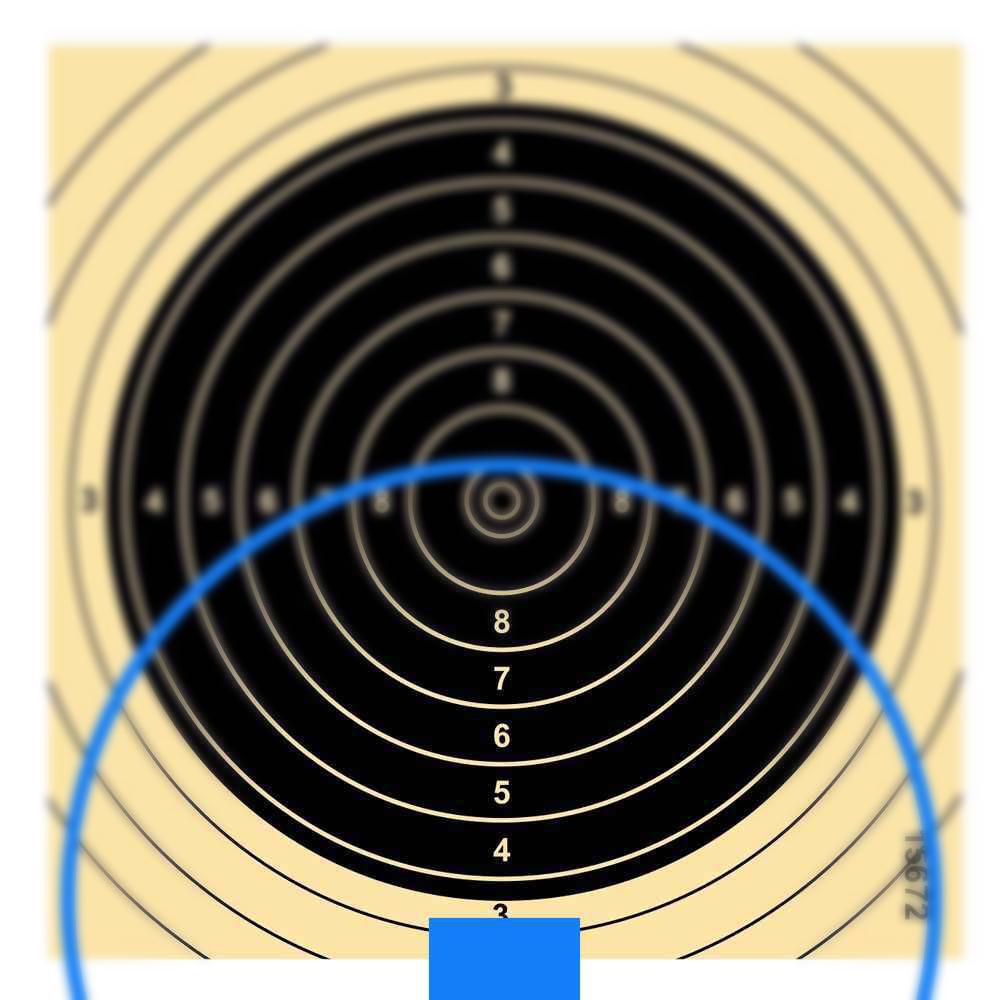 """Haltepunkt """"aufliegend"""" - Der schwarze Zielbereich muss auf dem Balkenkorn aufliegen. Eine geringer weißer Streifen muss noch erkennbar sein."""