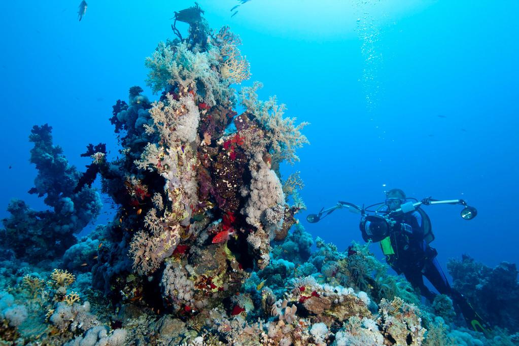 Mein Buddy Stephan vor einem schönen Korallenstock