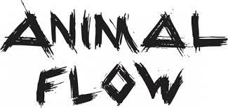 Animal Flow - Krafttraining, Ausdauer, Mobilität, Gruppentraining, Vorarlberg, Pur Dance