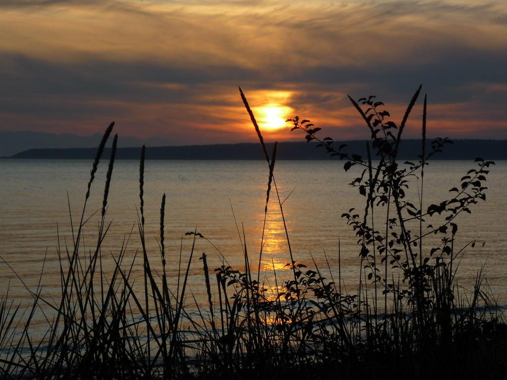 Sunset an der Sunshine Coast