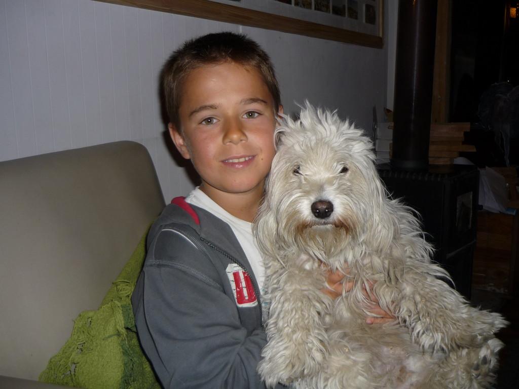 Mimi, der Hostelhund des Yaganhouses