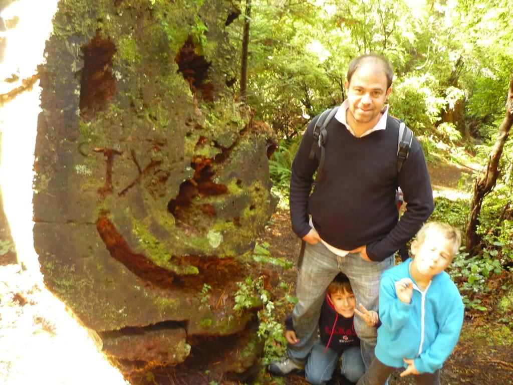 Redwoods Nationalpark, im Norden Kaliforniens