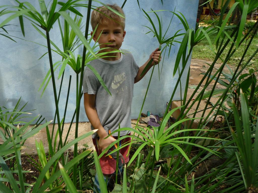 Jerome bei der Gartenarbeit