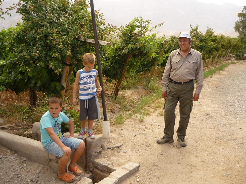 Explikationen des Wine Makers