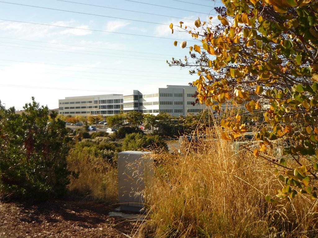 Hauptsitz von Google in Mountain View