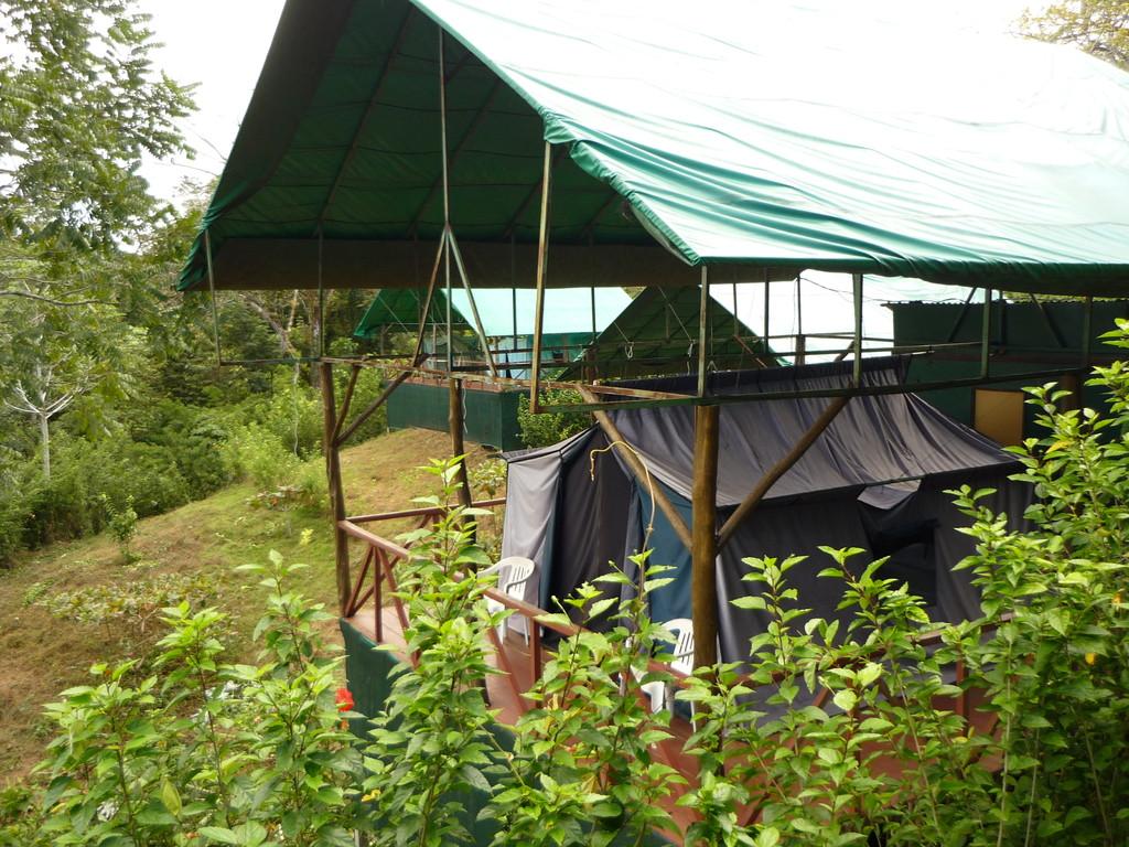 Unser 2. Zuhause in Bahia Drake in einem Zelt