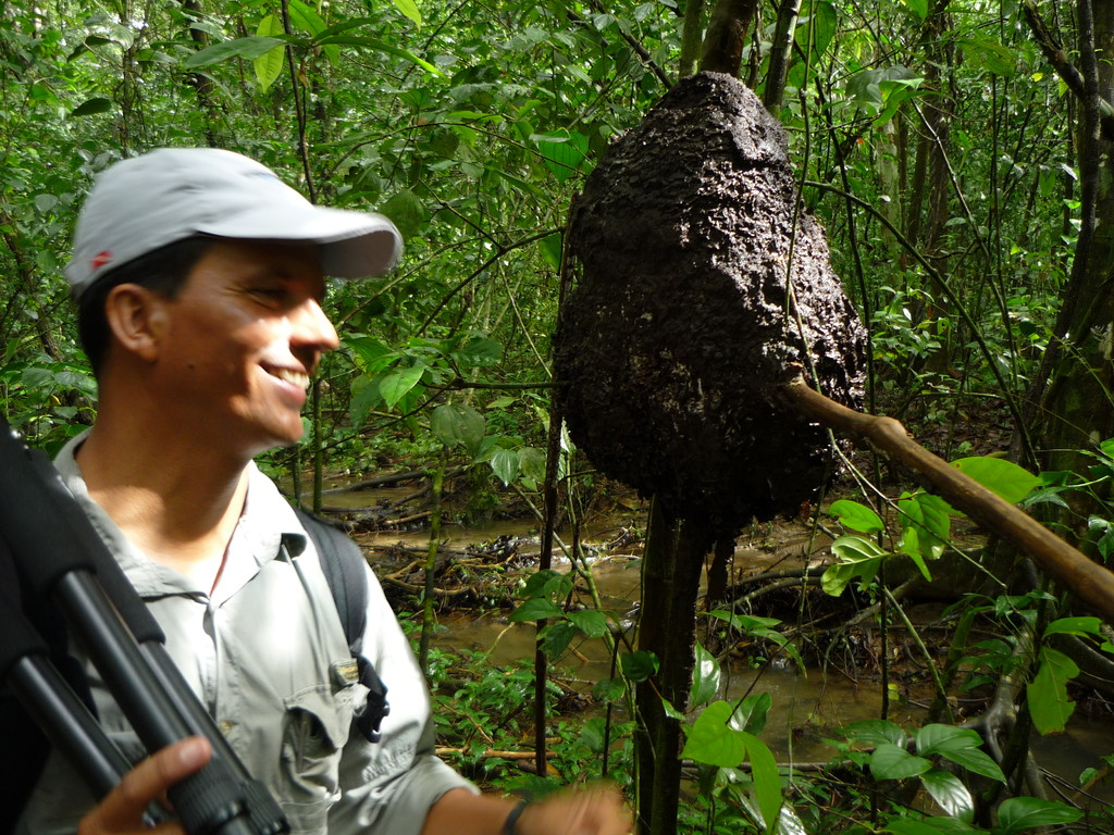 Vincent erklaert uns den Termitenbau