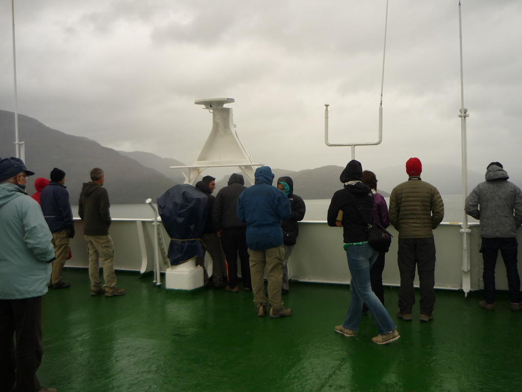 An Board werden Wale, Delphine, Robben, Albatrosse, ..., beobachtet werden