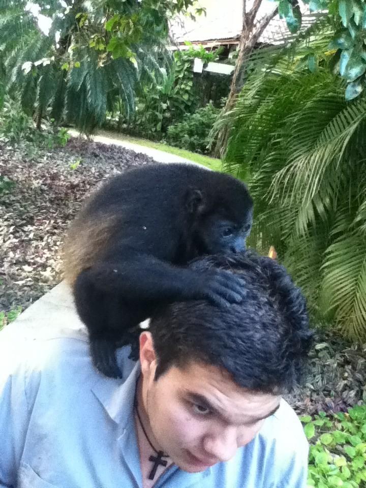 Der Affe leckt dem Jungen den Gel vom Kopf