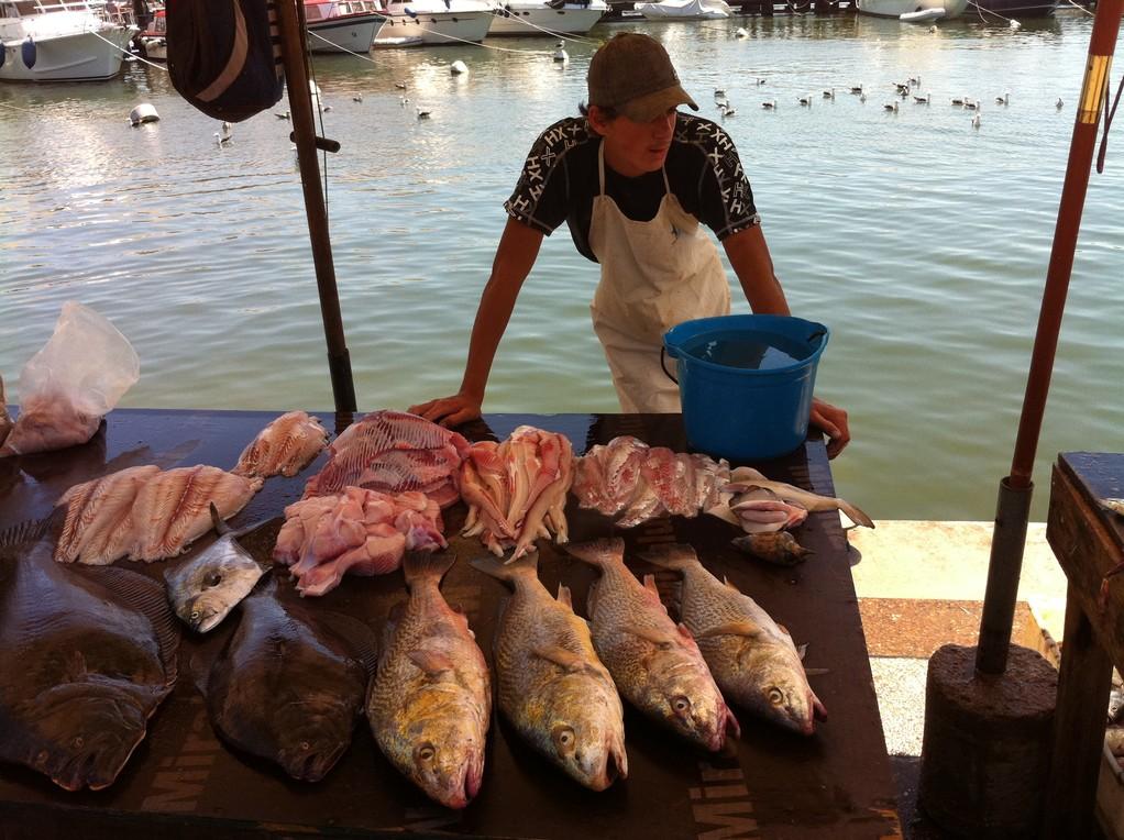 Dort wo die Fischer die Innerein ins Wasser zurueckwerfen...