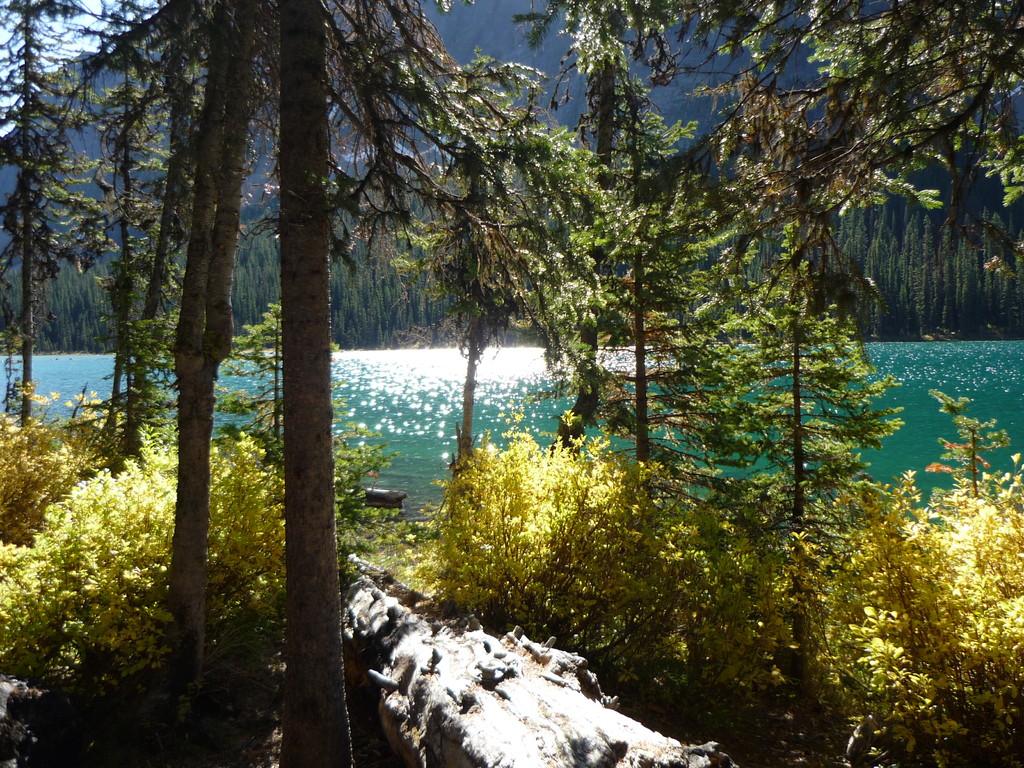 Lake Boom (versteckt, einsam, ein Wunder)