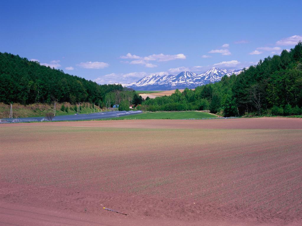 北海道中富良野町 早春のオプタテシケ山