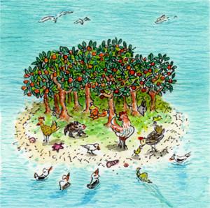 Isola delle Arance