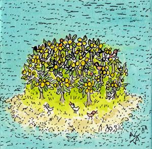 Isola dei limoni
