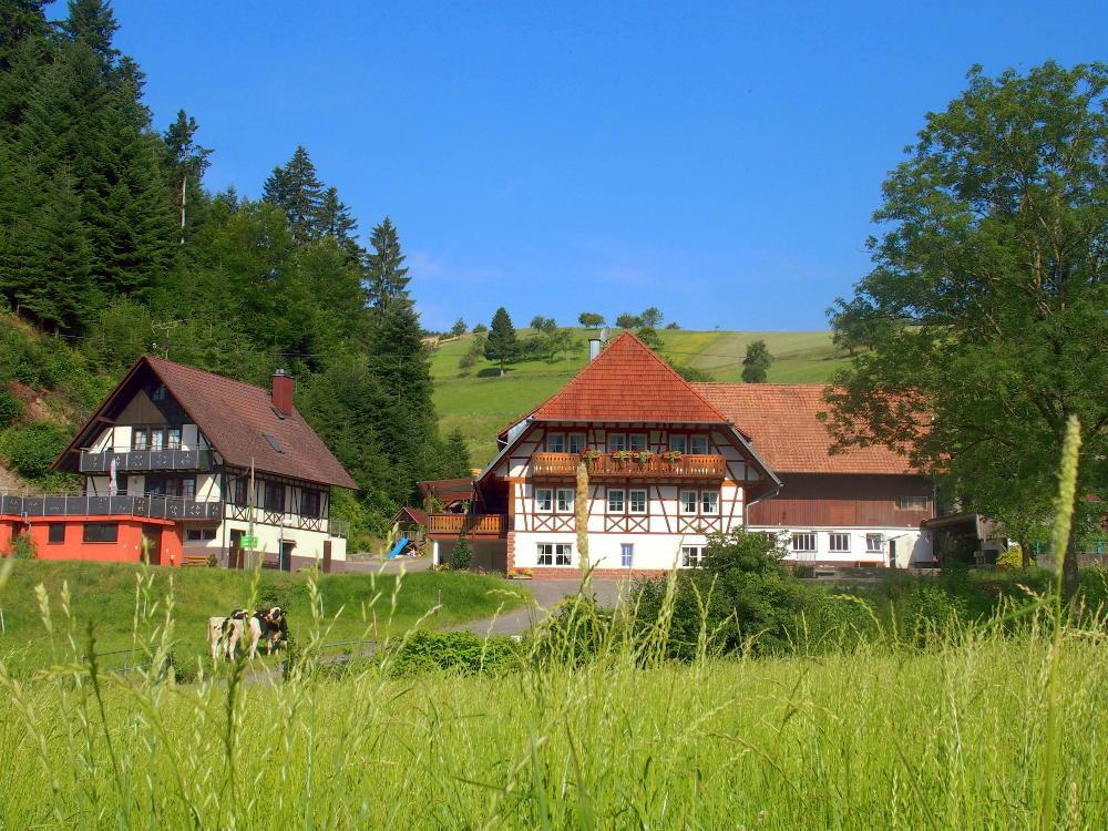 Der Hochenhof in einem der schönsten Seitentäler des Schwarzwaldes
