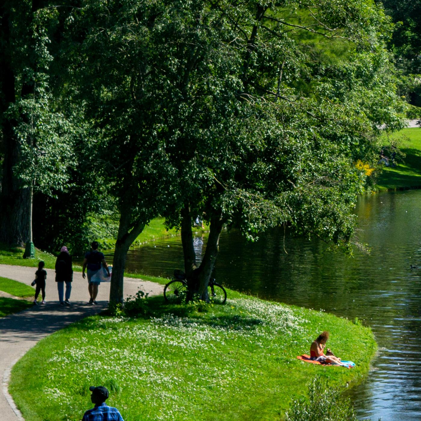 Tag im Park