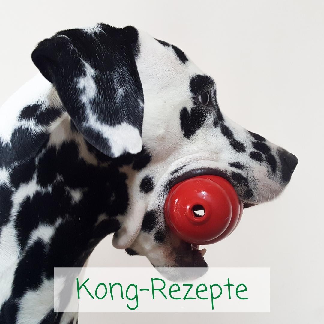Leckere Kong-Rezepte für Hunde