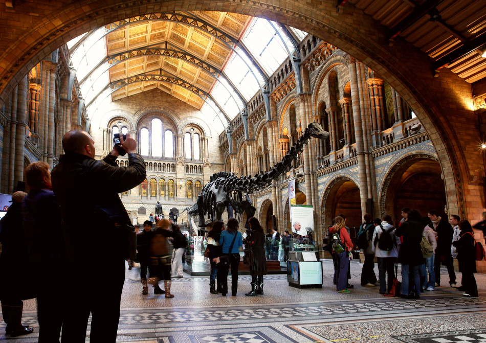 London - Naturhistorisches Museum