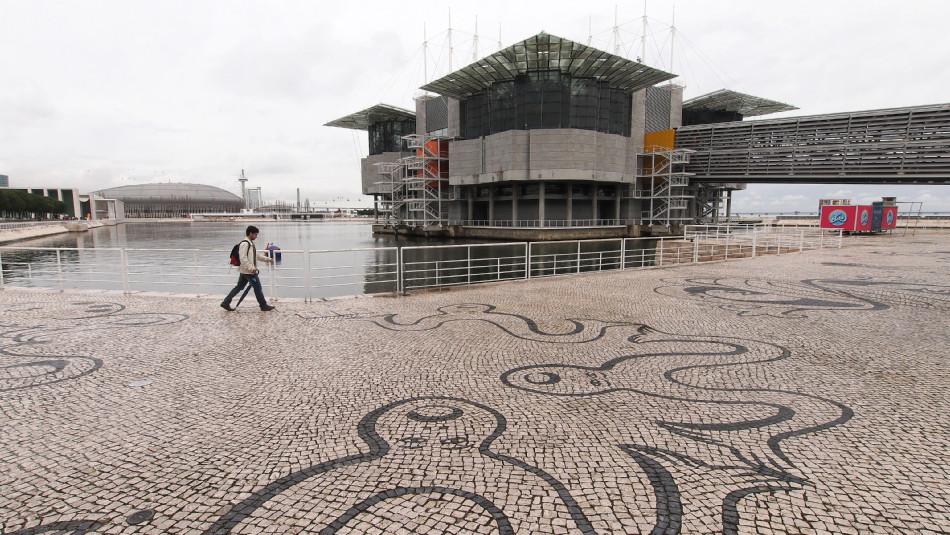 Lissabon - Ozeanarium