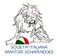 Italienischer Schapendoesklub