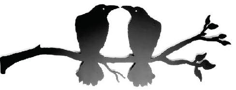 Kissing Ravens on branch 27 x 9