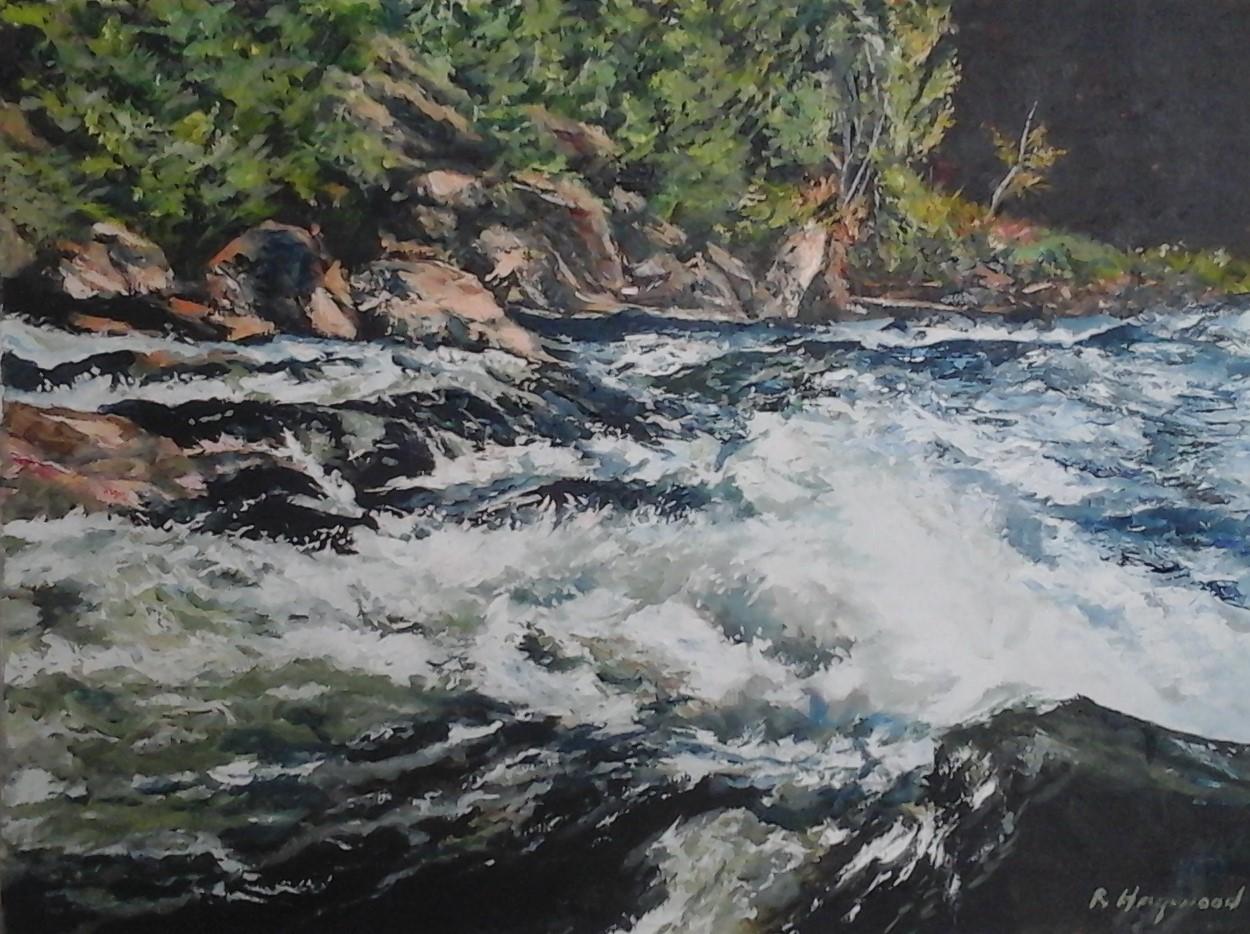 Wild River 18 x 24 oil