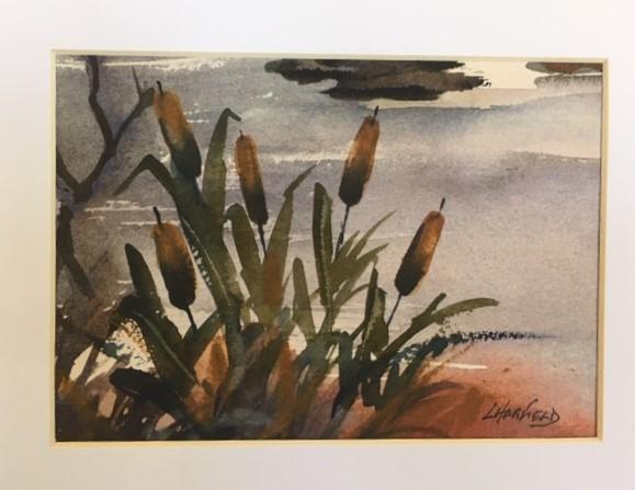 Kagawong Bullrushes 5 x 7 watercolour (matted 8 x 10)