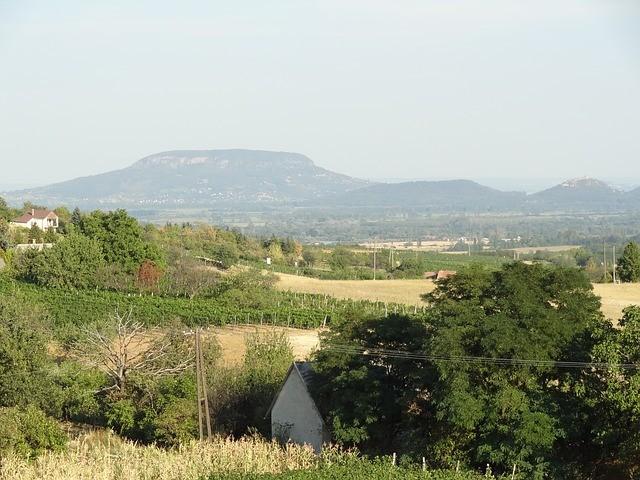 Weinbauregion Badacsony, Ungarn, Wein