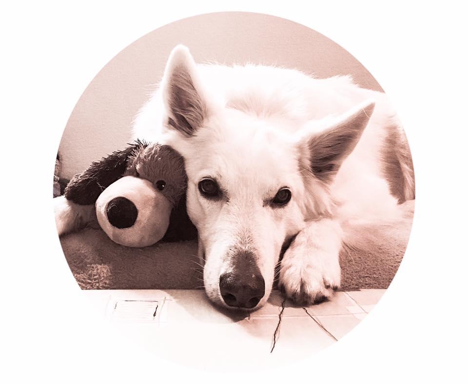 Kaly en haar nieuwe teddy