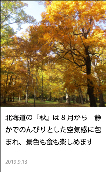 北海道の『秋』は8月から 静かでのんびるとした空気感に包まれ、景色も食も楽しめます