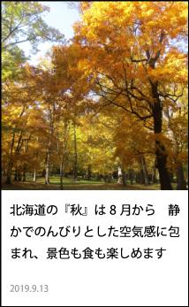 北海道の『秋』は8月から 静かでのんびりとした空気感に包まれ、景色も食も楽しめます。