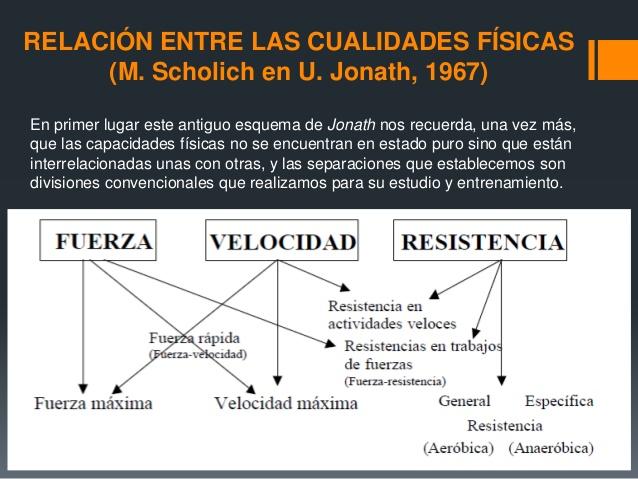 fuerza resistencia y velocidad definicion