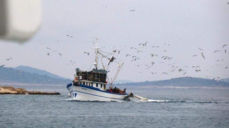 Die Fischer kommen mit Beute zurück