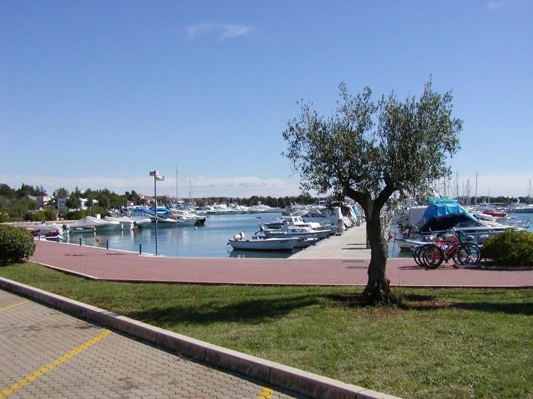 Hafen von Umag