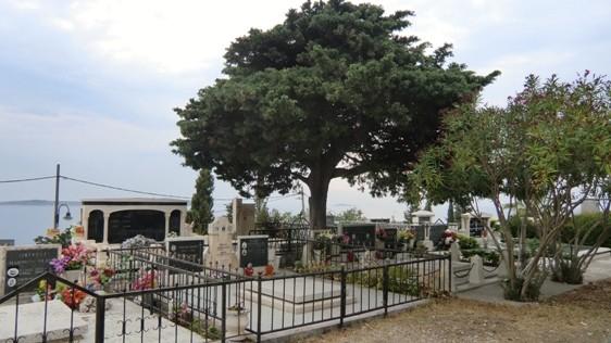 Friedhof hoch droben