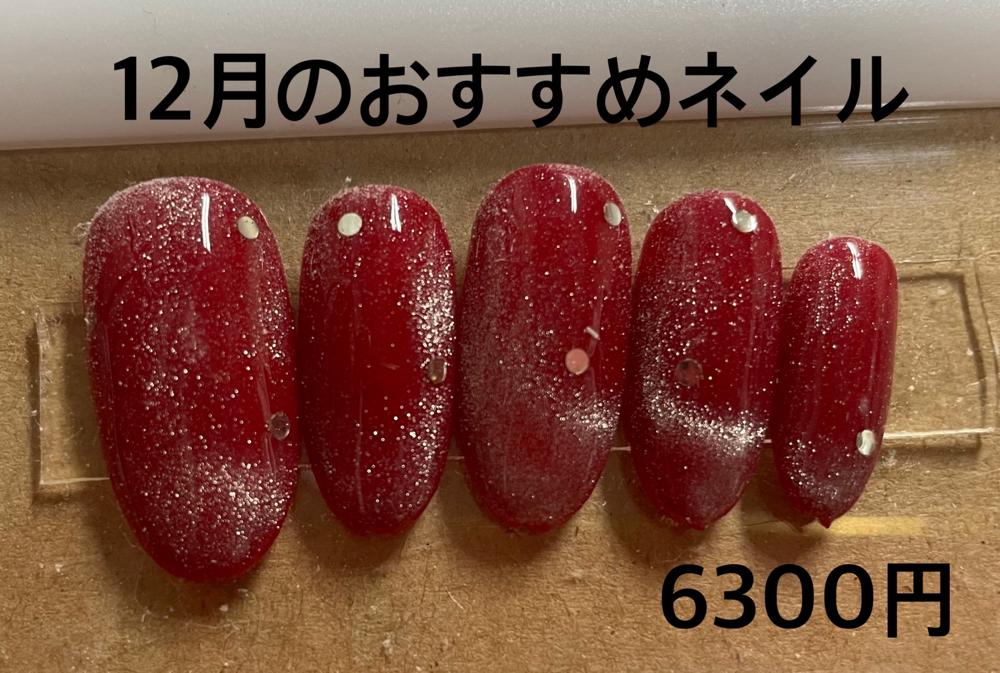 キャンペーン・メニュー サンプル①