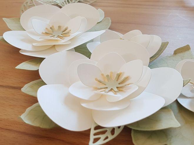 ... eine weiße Magnolie aus der Nähe