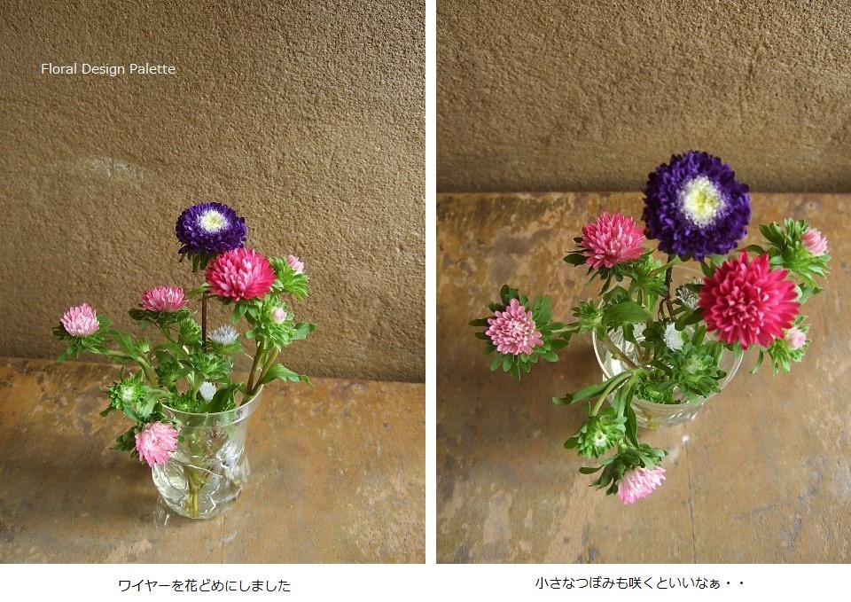 暑いけど、なんとか元気なお花たちです。(横13cm×18cm)