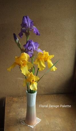 ジャーマンアイリスの花あしらい