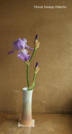 1本のジャーマンアイリスの花あしらい