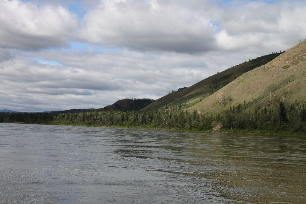 Sand, Wasser und Bäume am Yukon