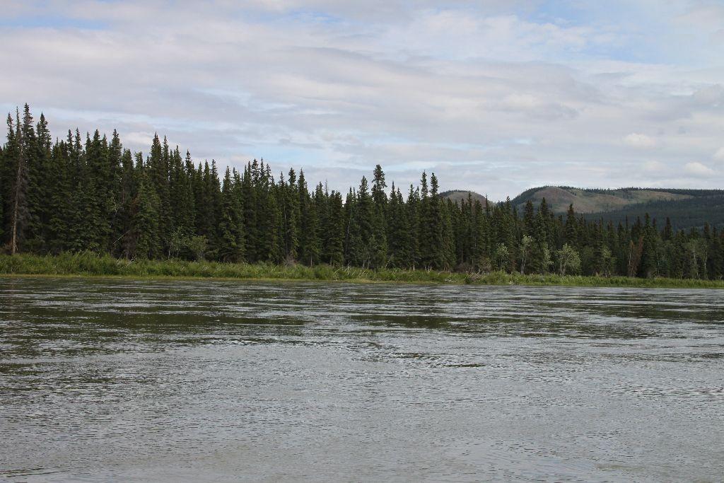 Der Yukon, am 2.Juli