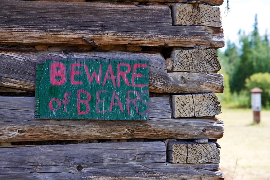 Auch hier lauert der Bär auf ahnungslose Touris.