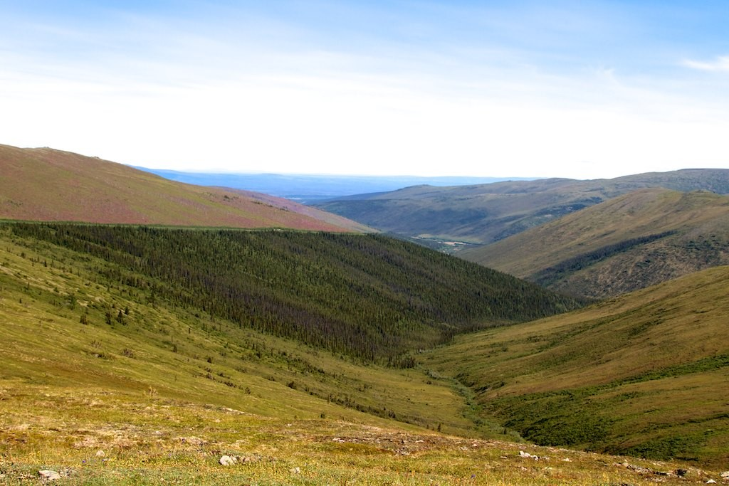 Rückblick in die Yukon Flats