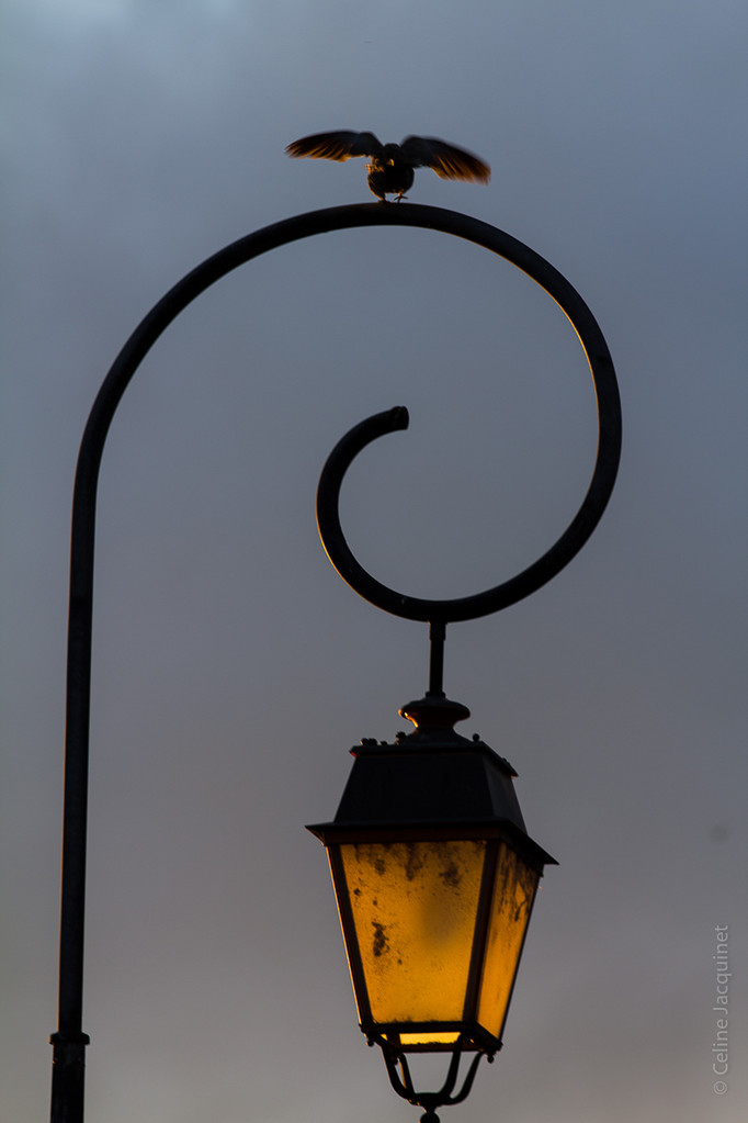 Lampadaire - Chateauponsac
