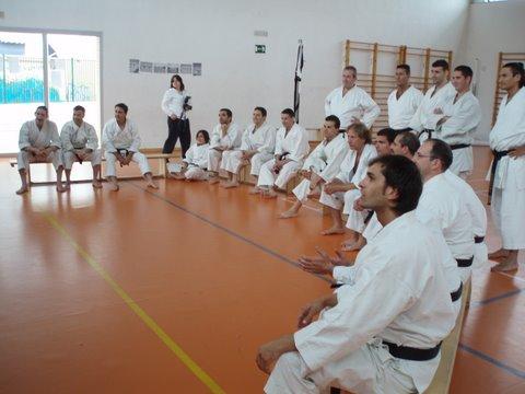 Curso Velivor, teoría sobre la función del diafragma en la respiración para el Karate.