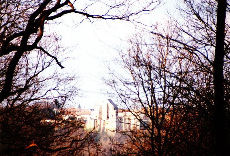 le chateau de Chevreuse