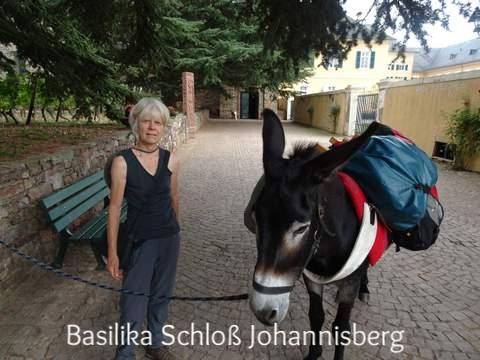 Mit Esel Janosch an der Basilika Johannisberg