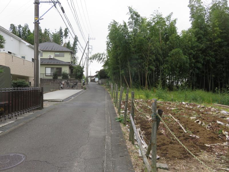 2.右手が早渕川への斜面樹林